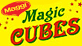 MAGGI MAGIC CUBES - VEGETARIAN MASALA