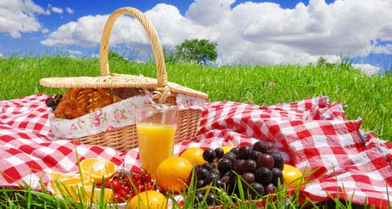 Here is a list of 10 best things to take on a picnic. 1. Foods Best Choice of Foods for Picnic. Photos by Steyn Viljoe. When you have your day off and you see that the weather is good, there's nothing more refreshing as a picnic. It doesn't take much to put up one and you'll have a splendid time with family and friends. Here is a list of